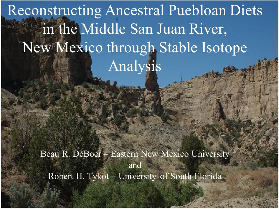 Reconstructing Ancestral Puebloan Diets in the Middle San Juan River, New Mexico through Stable Isotope Analysis Beau R.