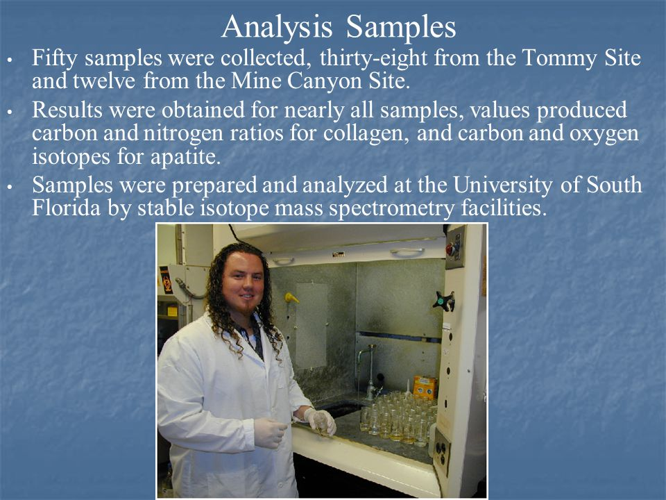 Analysis Samples Fifty samples were collected, thirty-eight from the Tommy Site and twelve from the Mine Canyon Site.