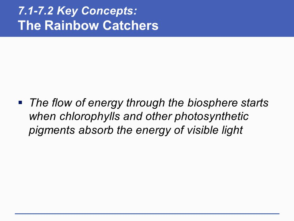 7.1-7.2 Key Concepts: The Rainbow Catchers  The flow of energy through the biosphere starts when chlorophylls and other photosynthetic pigments absor