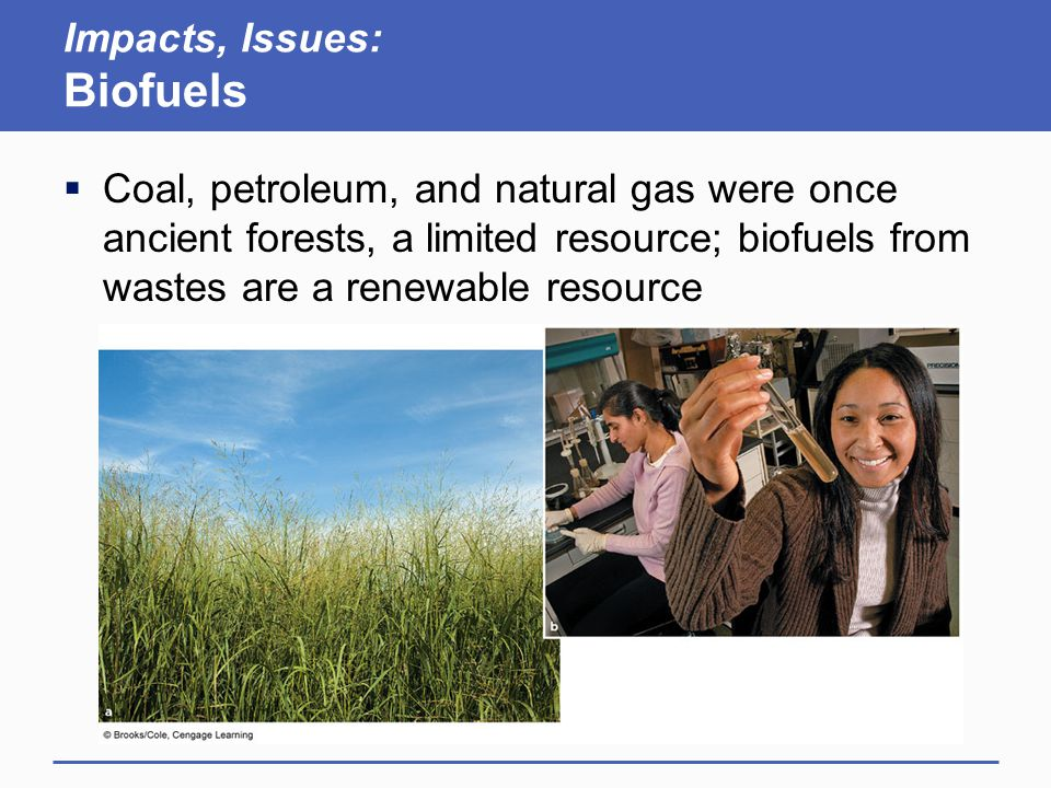 Impacts, Issues: Biofuels  Coal, petroleum, and natural gas were once ancient forests, a limited resource; biofuels from wastes are a renewable resou