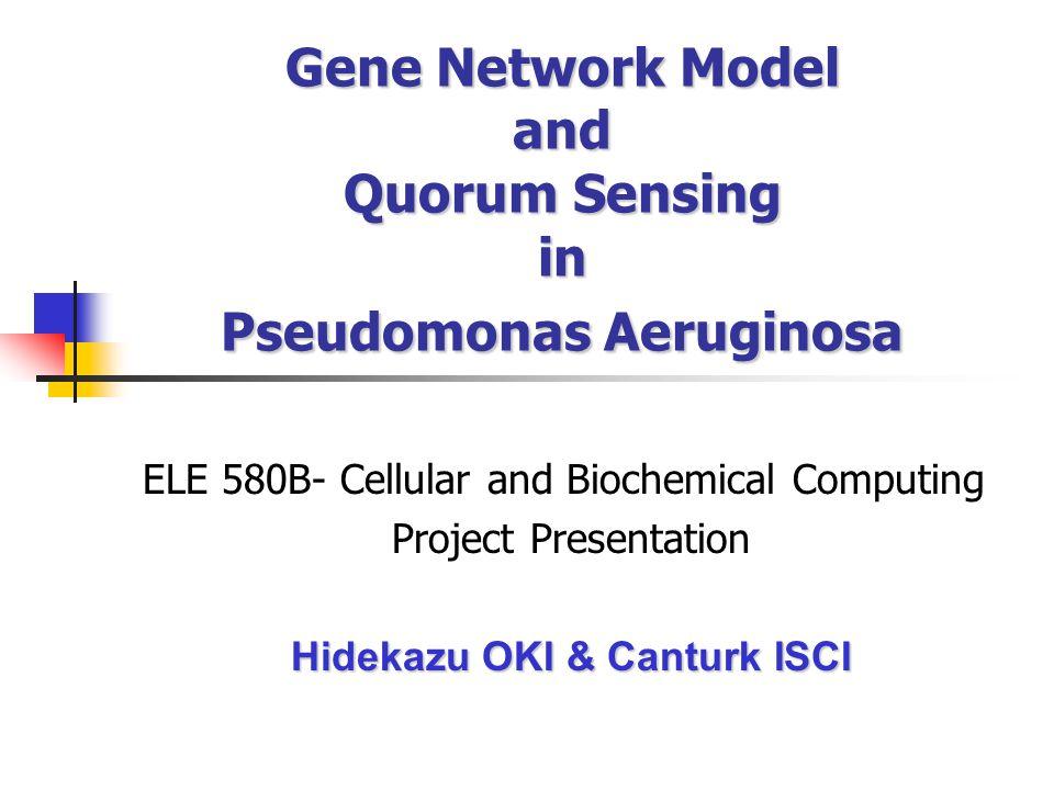 Gene Network Model and Quorum Sensing in Pseudomonas Aeruginosa ELE 580B- Cellular and Biochemical Computing Project Presentation Hidekazu OKI & Canturk ISCI