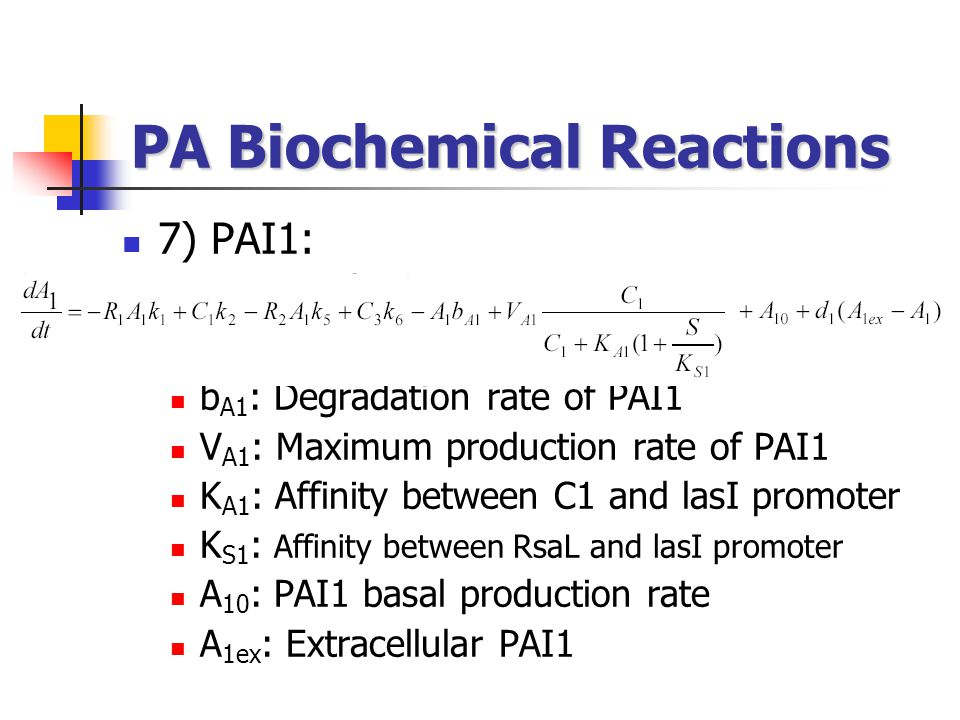 7) PAI1: b A1 : Degradation rate of PAI1 V A1 : Maximum production rate of PAI1 K A1 : Affinity between C1 and lasI promoter K S1 : Affinity between R