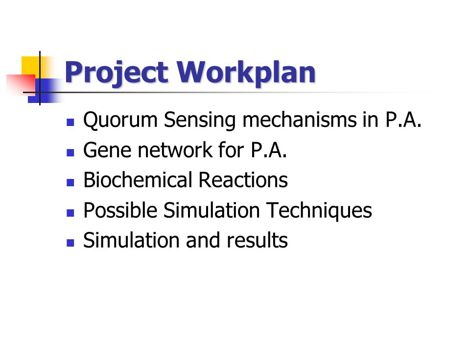 Project Workplan Quorum Sensing mechanisms in P.A. Gene network for P.A. Biochemical Reactions Possible Simulation Techniques Simulation and results
