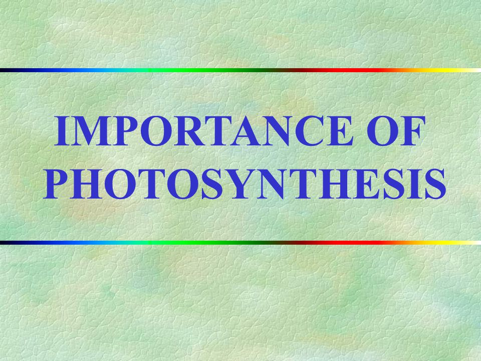 IMPORTANCE OF PHOTOSYNTHESIS II.CHAPTER OUTLINE