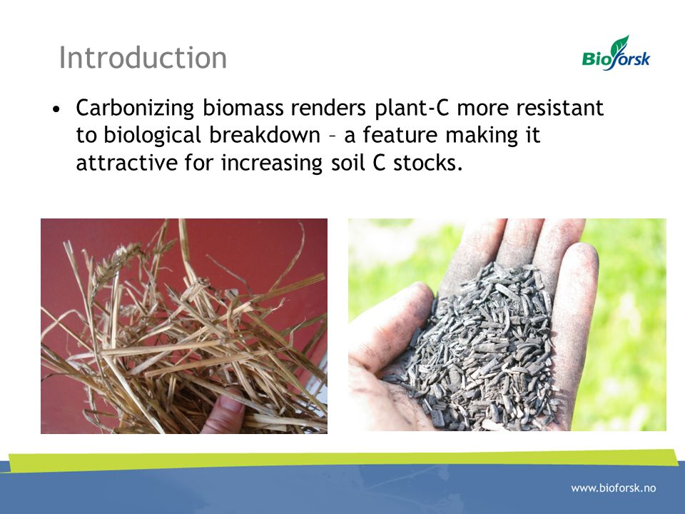 Introduction Carbonizing biomass renders plant-C more resistant to biological breakdown – a feature making it attractive for increasing soil C stocks.