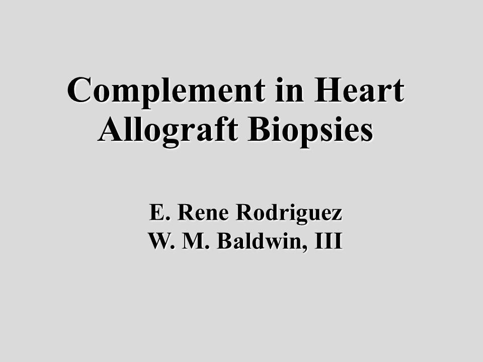 Complement in Heart Allograft Biopsies E. Rene Rodriguez W. M. Baldwin, III