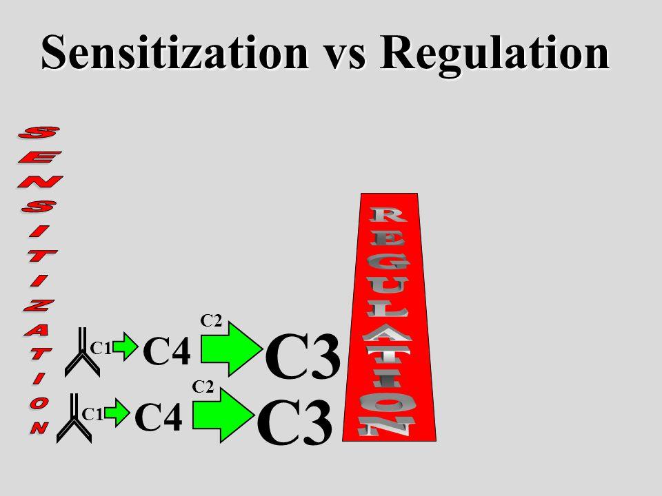 C1 C4 C3 C2 C1 C4 C3 C2 Sensitization vs Regulation
