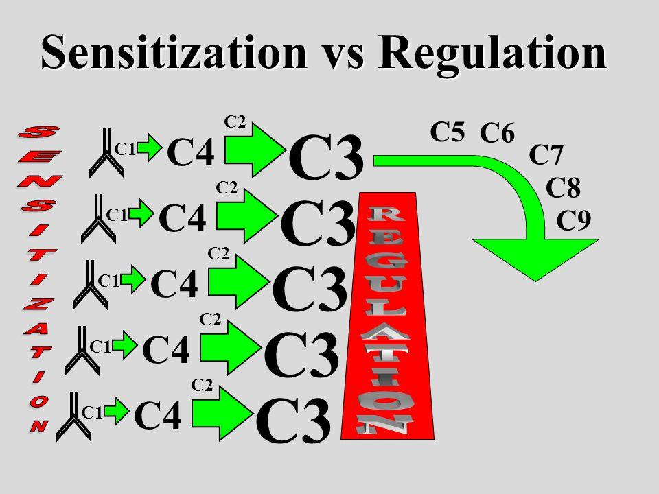 C1 C4 C3 C2 C1 C4 C3 C2 C1 C4 C3 C2 C1 C4 C3 C2 C1 C4 C3 C2 C5 C6 C7 C8 C9 Sensitization vs Regulation