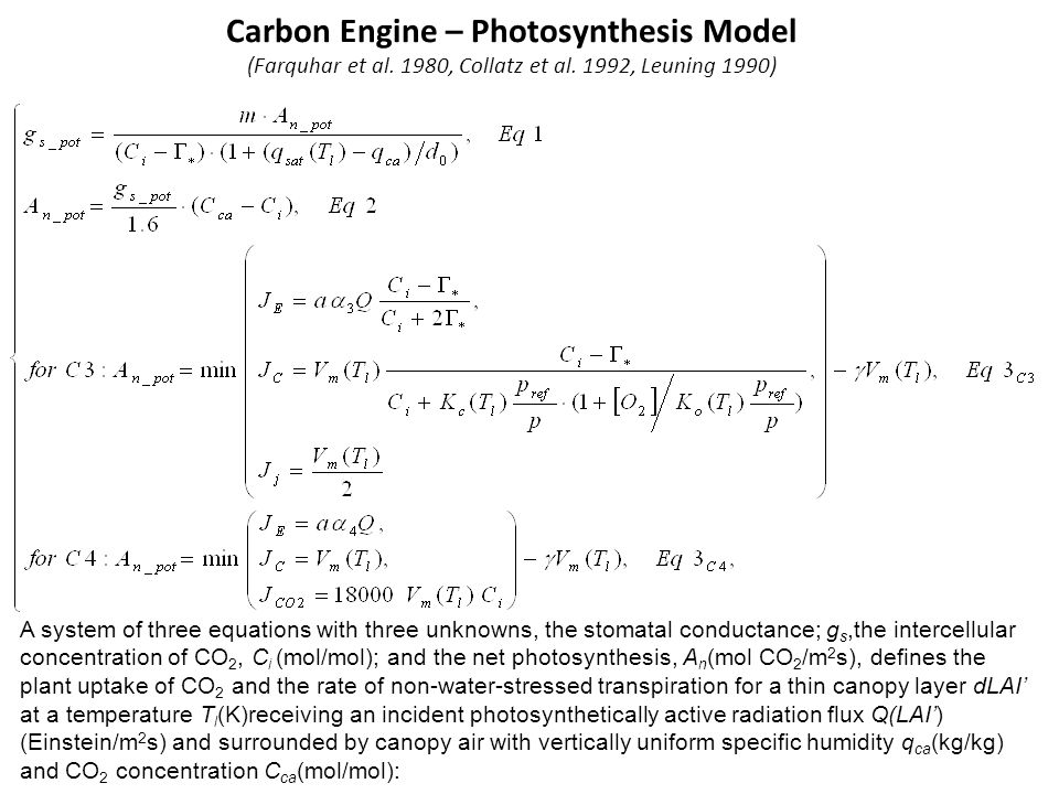 Carbon Engine – Photosynthesis Model (Farquhar et al. 1980, Collatz et al. 1992, Leuning 1990) A system of three equations with three unknowns, the st