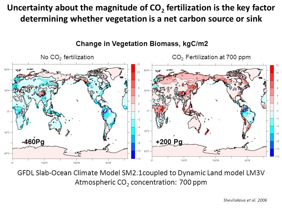 Uncertainty about the magnitude of CO 2 fertilization is the key factor determining whether vegetation is a net carbon source or sink No CO 2 fertiliz