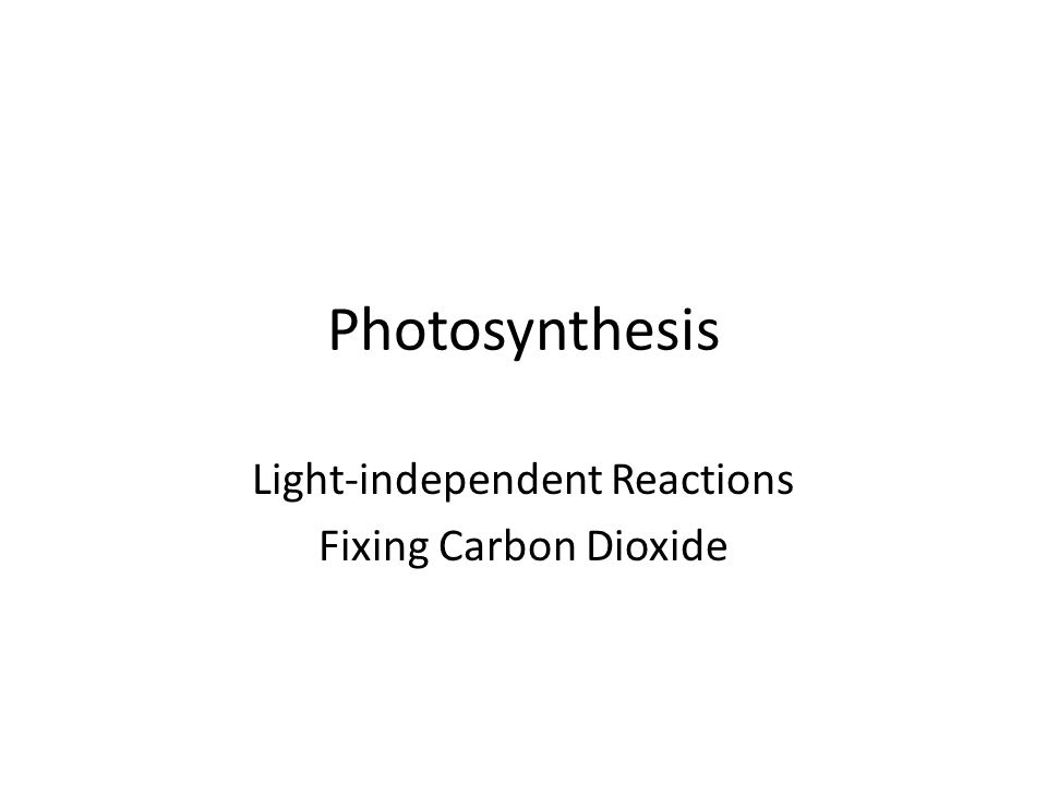 Photosynthesis Light-independent Reactions Fixing Carbon Dioxide