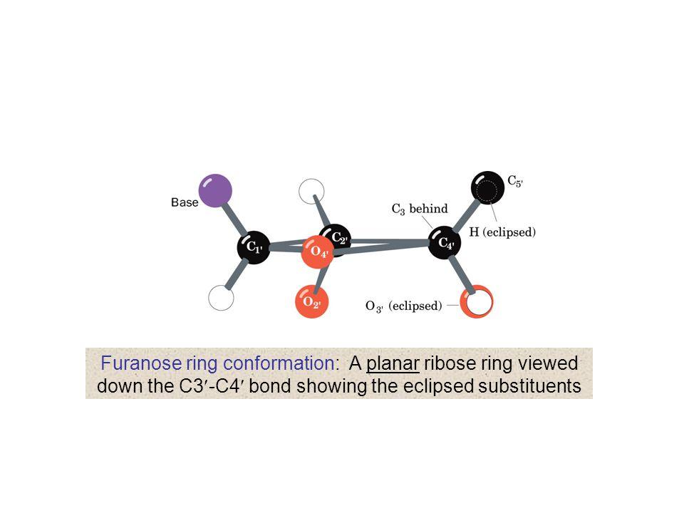 Splicing DNA using terminal transferase