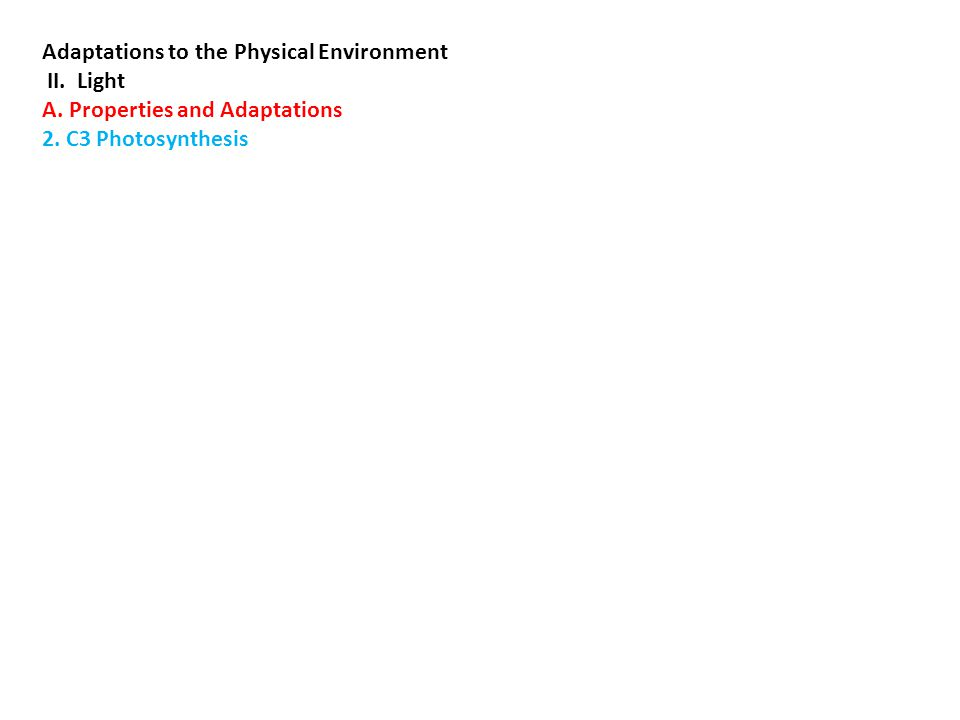 Adaptations to the Physical Environment II. Light A.
