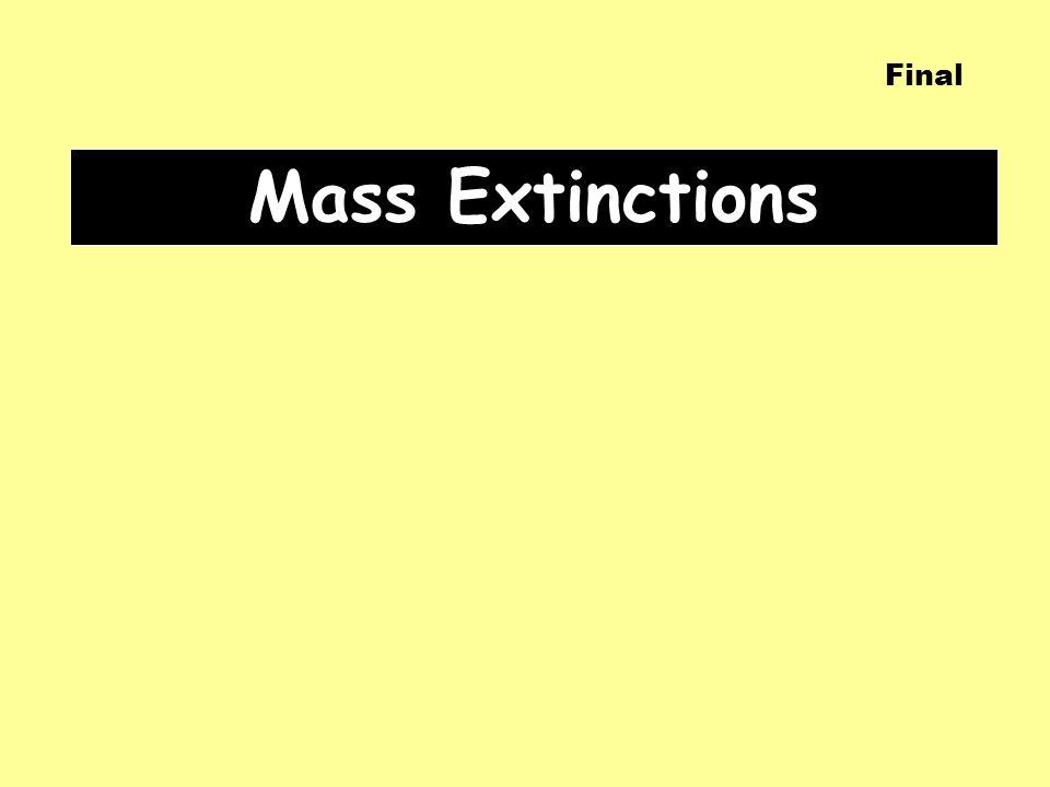 Mass Extinctions Final