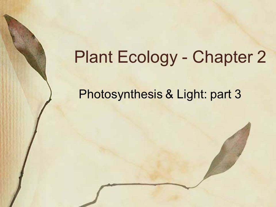 Plant Ecology - Chapter 2 Photosynthesis & Light: part 3