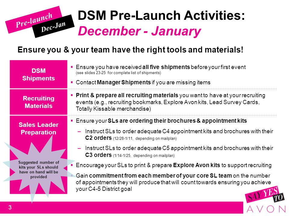 Pre-launch DSM Pre-Launch Activities: First 2 weeks of January Make final preparations; Engage, Excite & Mobilize your teams.