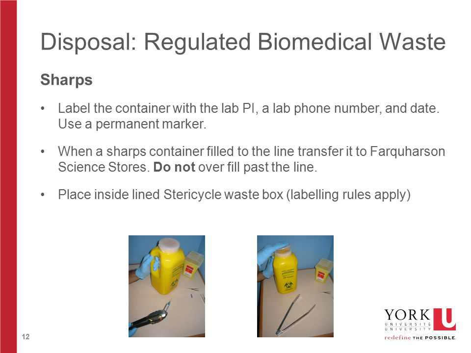 12 Disposal: Regulated Biomedical Waste Sharps Label the container with the lab PI, a lab phone number, and date.