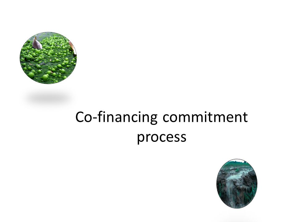 Co-financing commitment process