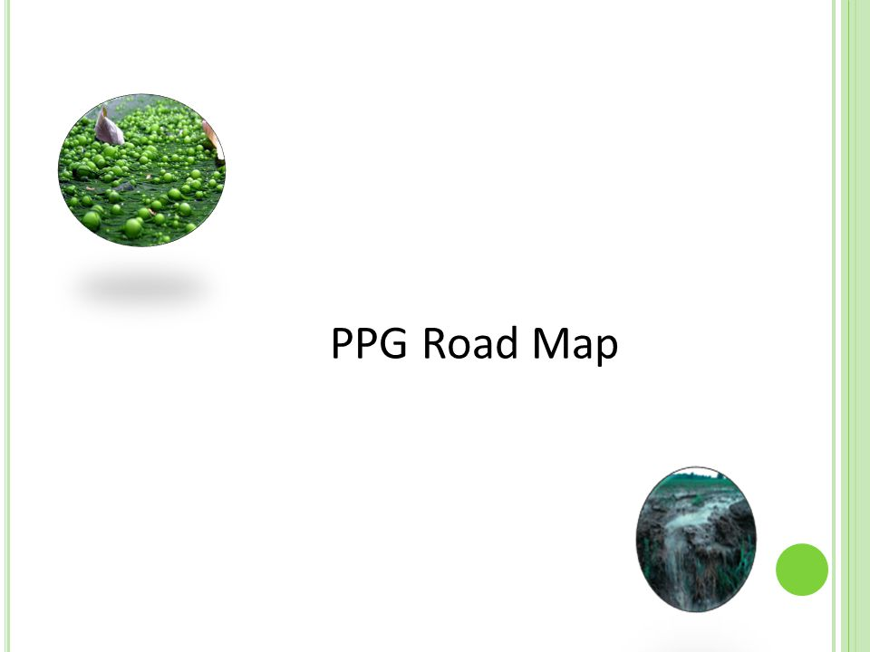 PPG Road Map