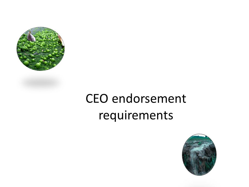 CEO endorsement requirements