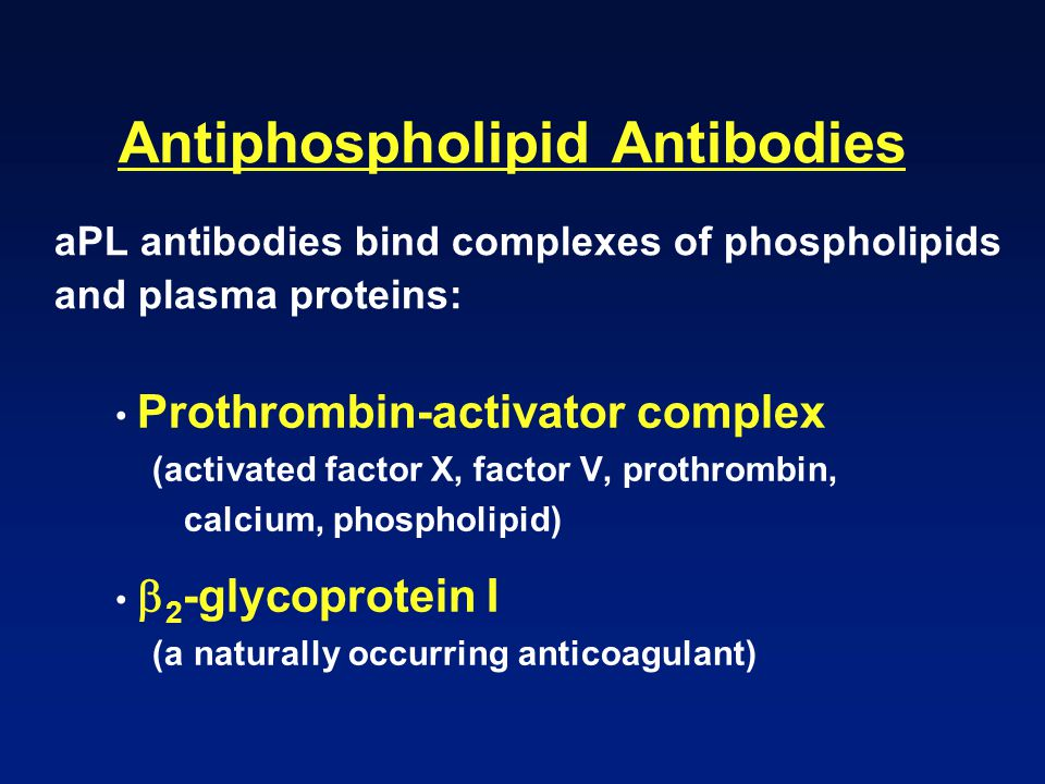 Antiphospholipid Antibodies aPL antibodies bind complexes of phospholipids and plasma proteins: Prothrombin-activator complex (activated factor X, fac