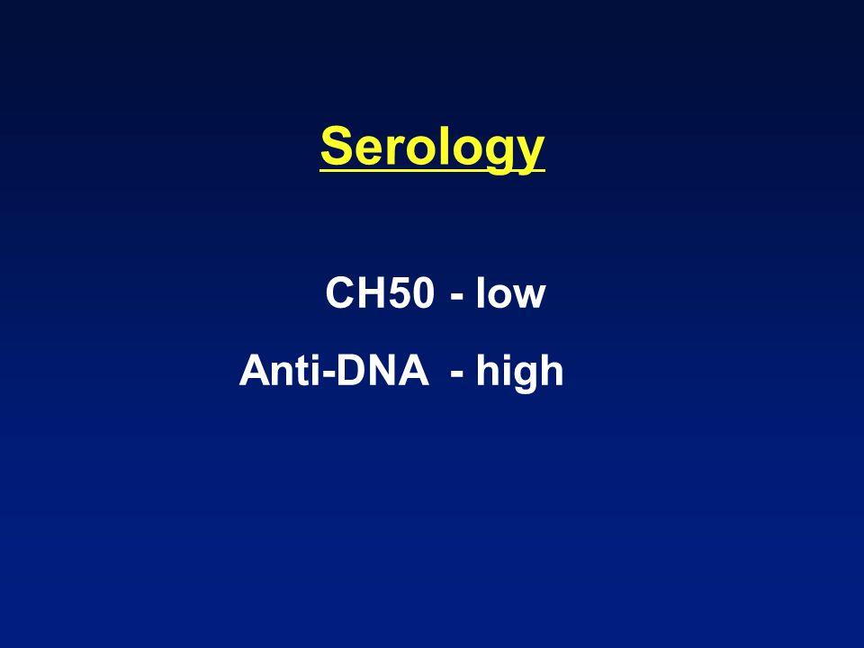 Serology CH50- low Anti-DNA- high