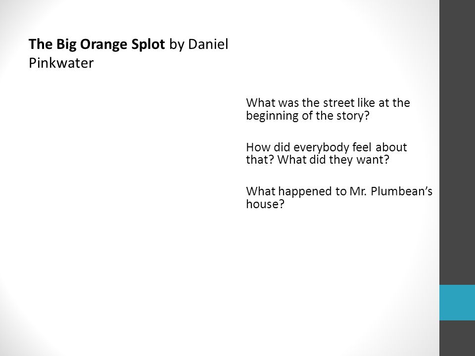The Big Orange Splot by Daniel Pinkwater What was the street like at the beginning of the story.