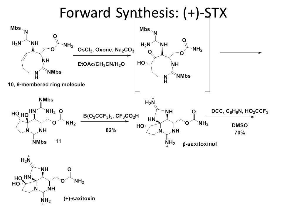 Forward Synthesis: (+)-STX β -saxitoxinol