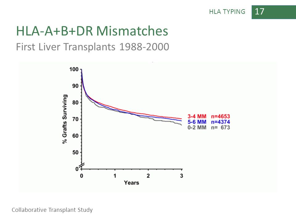 17 HLA TYPING HLA-A+B+DR Mismatches First Liver Transplants 1988-2000 Collaborative Transplant Study