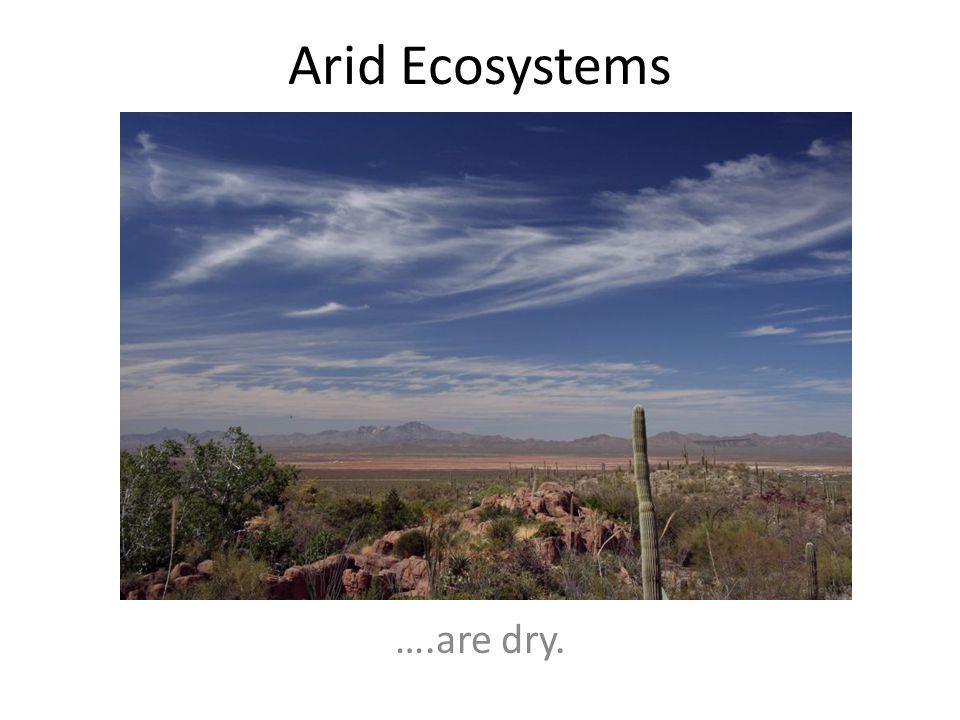 Arid Ecosystems ….are dry.