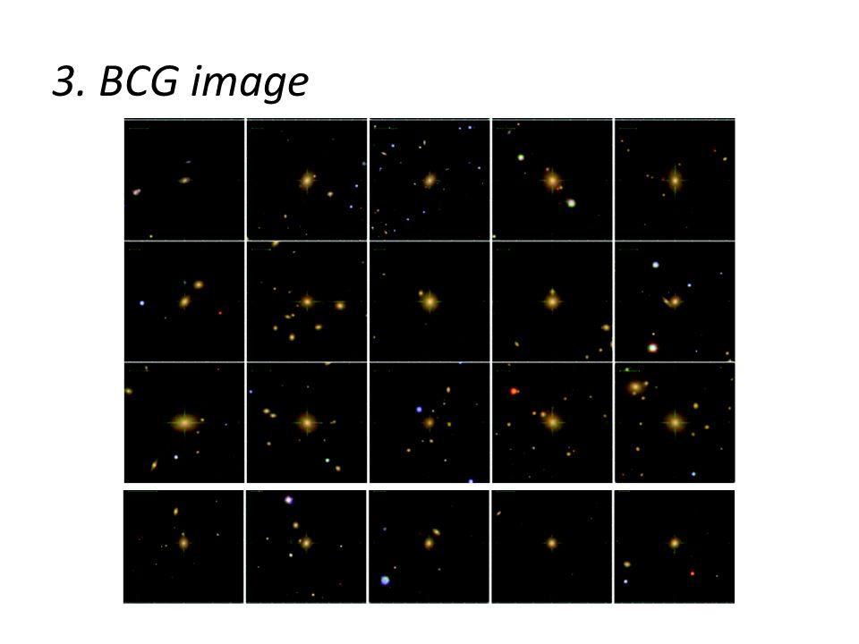 3. BCG image