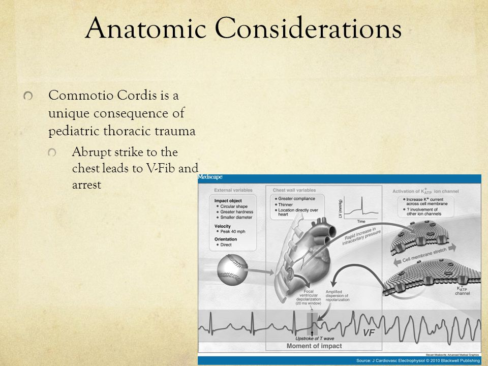 Anatomic Considerations Commotio Cordis is a unique consequence of pediatric thoracic trauma Abrupt strike to the chest leads to V-Fib and arrest
