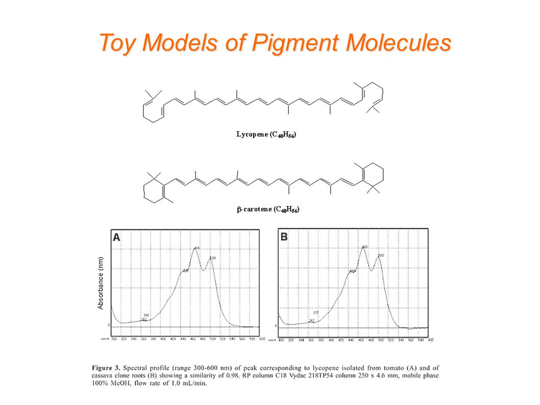 Toy Models of Pigment Molecules