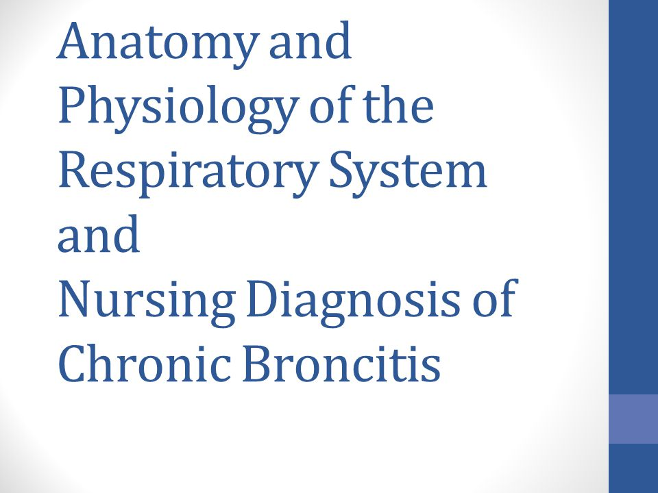 Anatomy and Physiology of the Respiratory System and Nursing Diagnosis of Chronic Broncitis