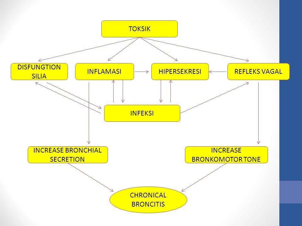 TOKSIK INFLAMASI INCREASE BRONCHIAL SECRETION INCREASE BRONKOMOTOR TONE HIPERSEKRESI DISFUNGTION SILIA REFLEKS VAGAL INFEKSI CHRONICAL BRONCITIS