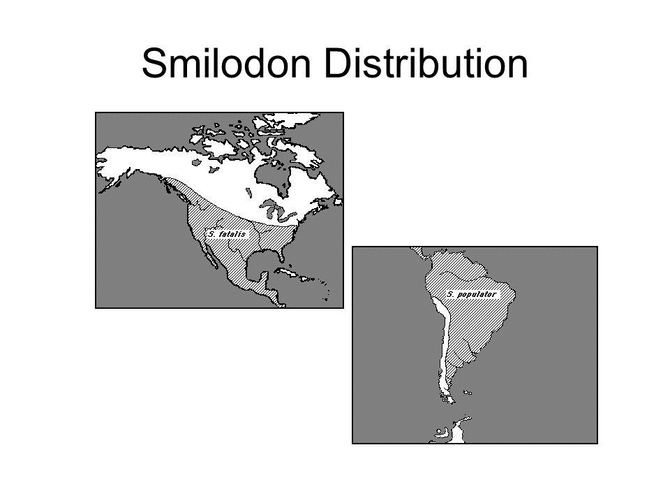 Smilodon Distribution