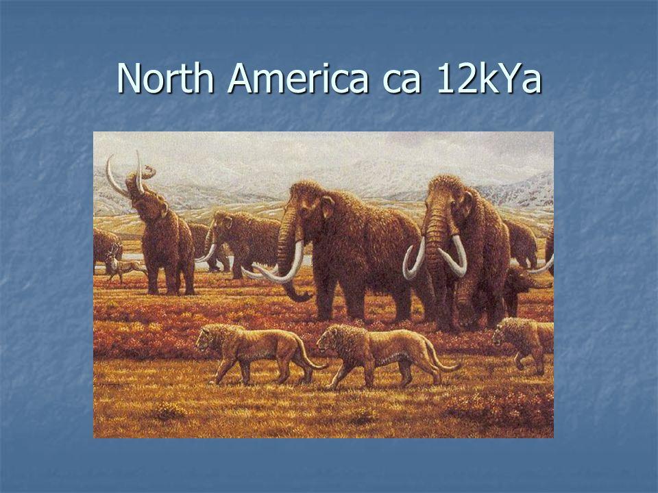 North America ca 12kYa