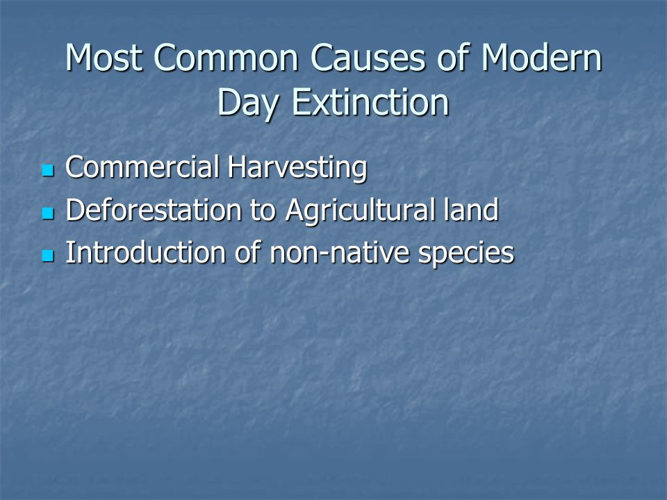 Most Common Causes of Modern Day Extinction Commercial Harvesting Commercial Harvesting Deforestation to Agricultural land Deforestation to Agricultur