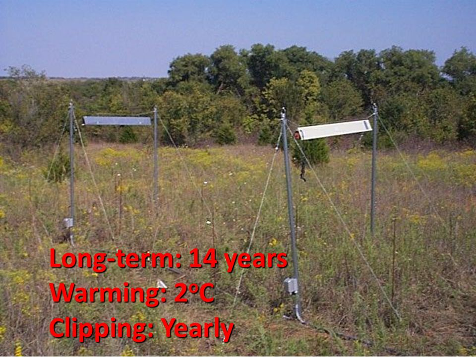 Long-term: 14 years Warming: 2 o C Clipping: Yearly