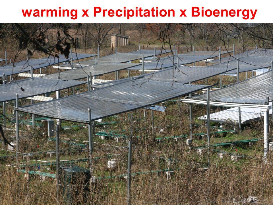 warming x Precipitation x Bioenergy