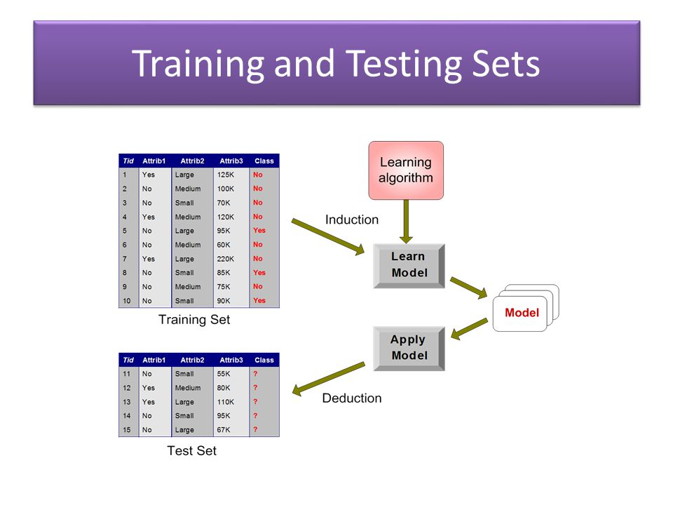 Training and Testing Sets