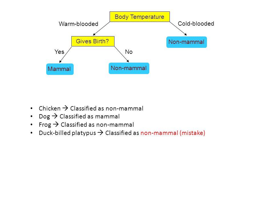Body Temperature Gives Birth? Non-mammal Yes Cold-blooded Warm-blooded Mammal Non-mammal No Chicken  Classified as non-mammal Dog  Classified as mam