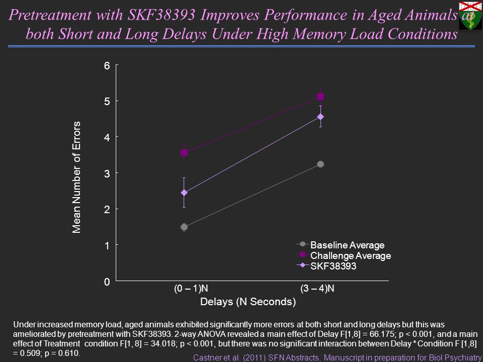 Delays (N Seconds) Mean Number of Errors Pretreatment with SKF38393 Improves Performance in Aged Animals at both Short and Long Delays Under High Memory Load Conditions (0 – 1)N(3 – 4)N 0 1 2 3 4 5 6 Baseline Average Challenge Average SKF38393 Under increased memory load, aged animals exhibited significantly more errors at both short and long delays but this was ameliorated by pretreatment with SKF38393.