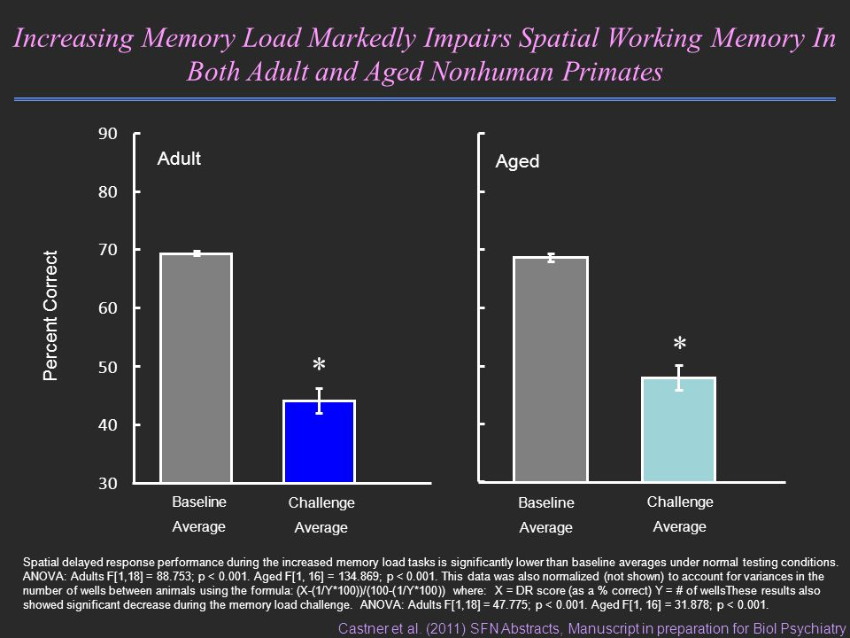 Increasing Memory Load Markedly Impairs Spatial Working Memory In Both Adult and Aged Nonhuman Primates Percent Correct Adult Baseline Average Challenge Average * 30 40 50 60 70 80 90 Aged Baseline Average Challenge Average * Spatial delayed response performance during the increased memory load tasks is significantly lower than baseline averages under normal testing conditions.