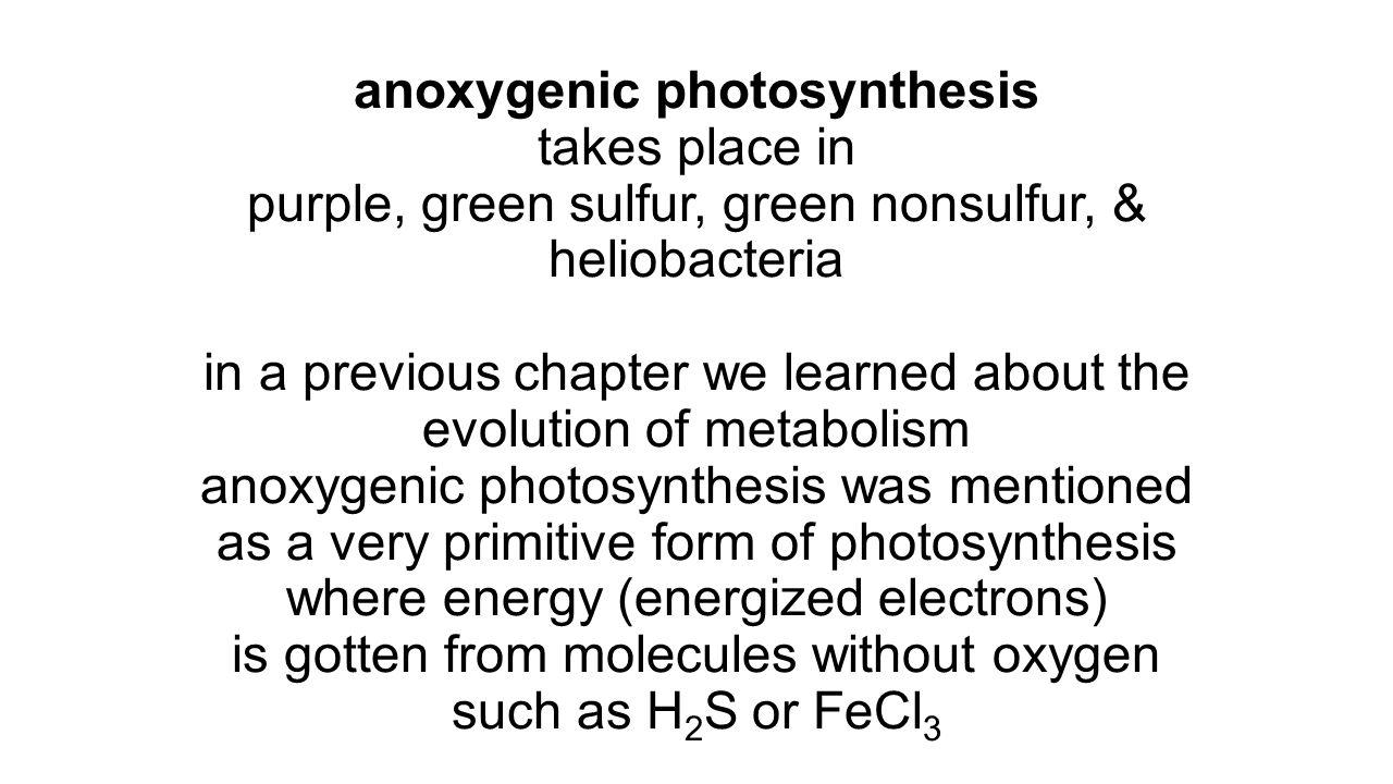 Photosystem I 1.energized electrons from photosystem II(700) 2.