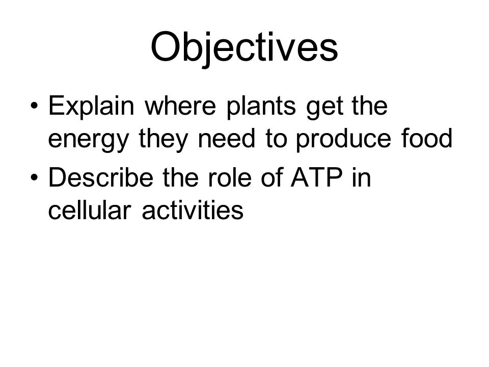 Objectives Explain where plants get the energy they need to produce food Describe the role of ATP in cellular activities