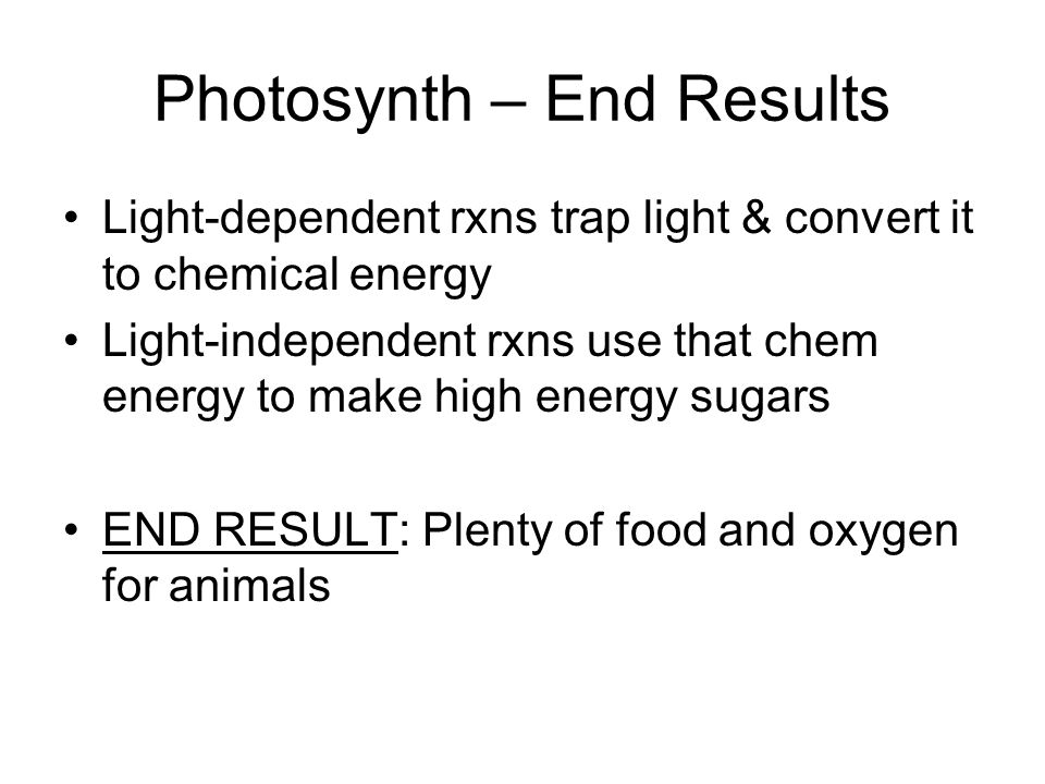 Photosynth – End Results Light-dependent rxns trap light & convert it to chemical energy Light-independent rxns use that chem energy to make high ener