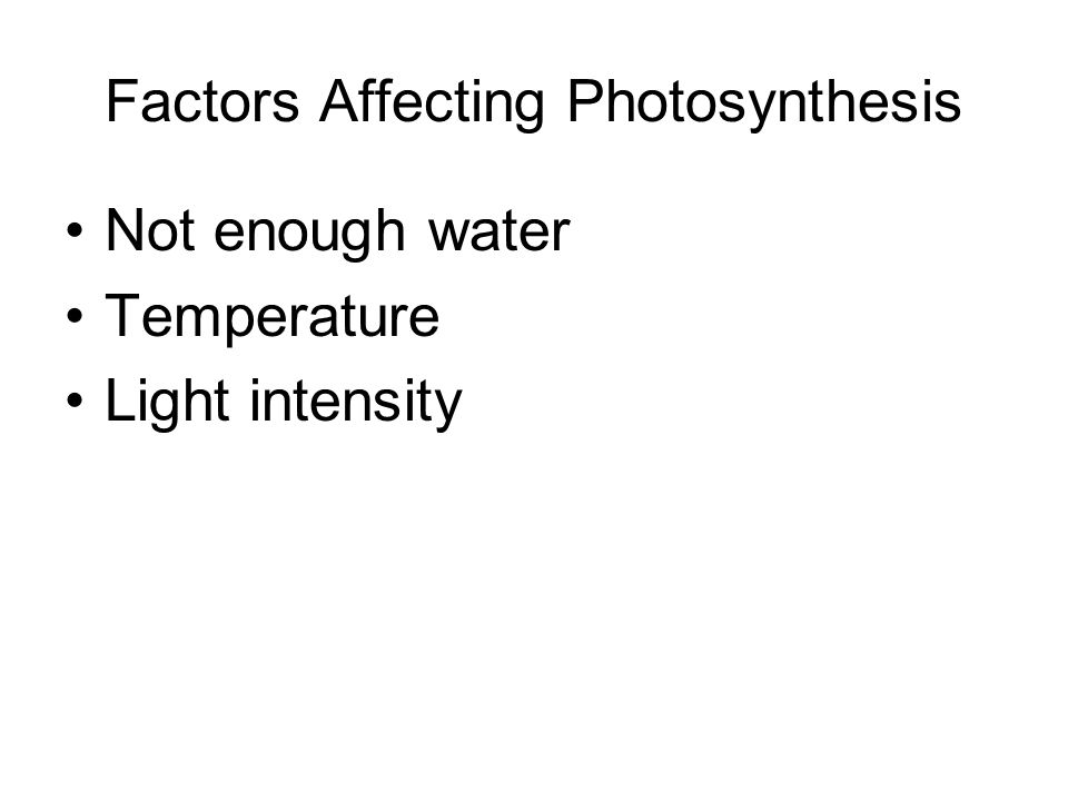 Factors Affecting Photosynthesis Not enough water Temperature Light intensity