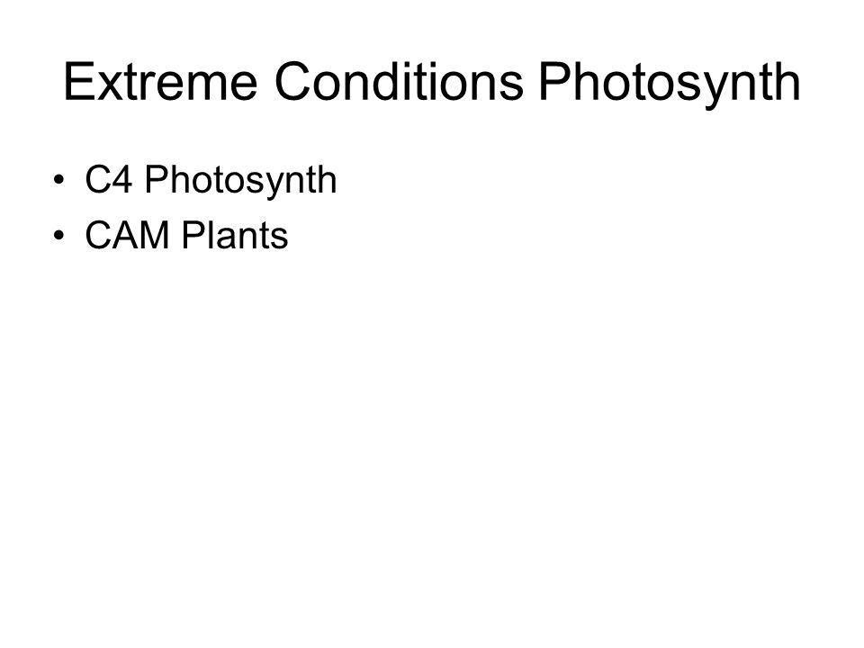 Extreme Conditions Photosynth C4 Photosynth CAM Plants