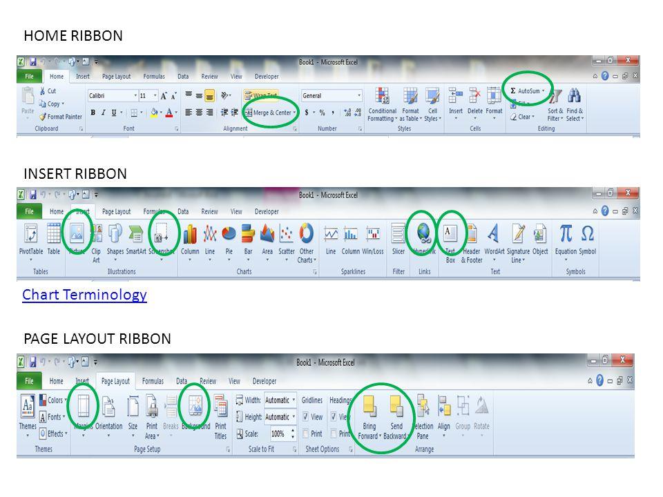 HOME RIBBON INSERT RIBBON Chart Terminology PAGE LAYOUT RIBBON